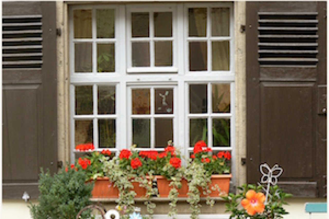 Holzwurm im holzfenster tiere frage und antwort - Holzwurm im fensterrahmen ...
