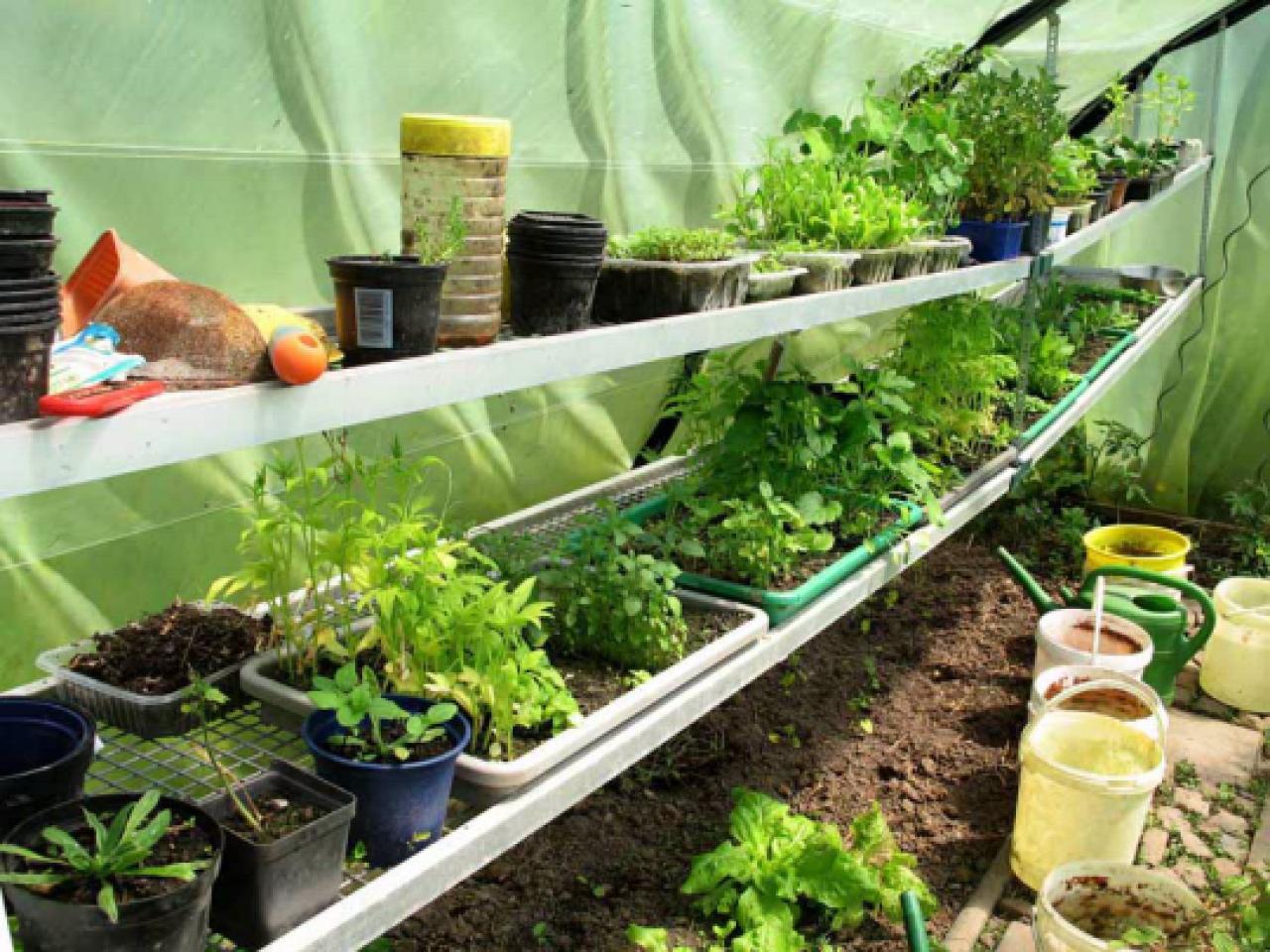was kostet ein gew chshaus nachrichten landleben wochenblatt f r landwirtschaft landleben. Black Bedroom Furniture Sets. Home Design Ideas